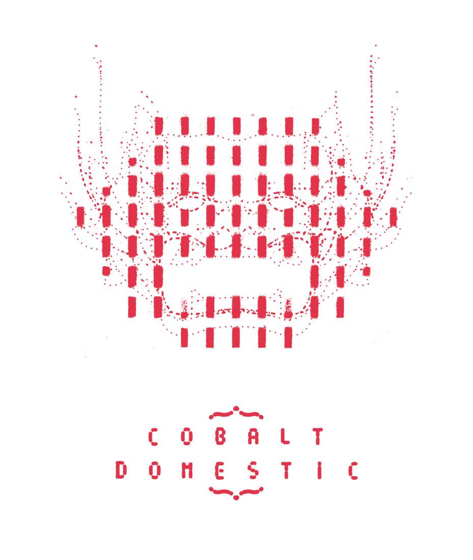 cobalt 2007